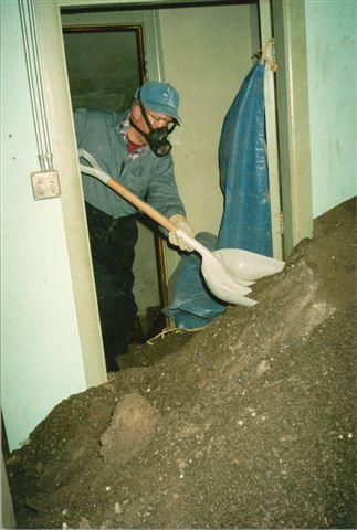 Bat Proofing Specialists Door County Pest Control